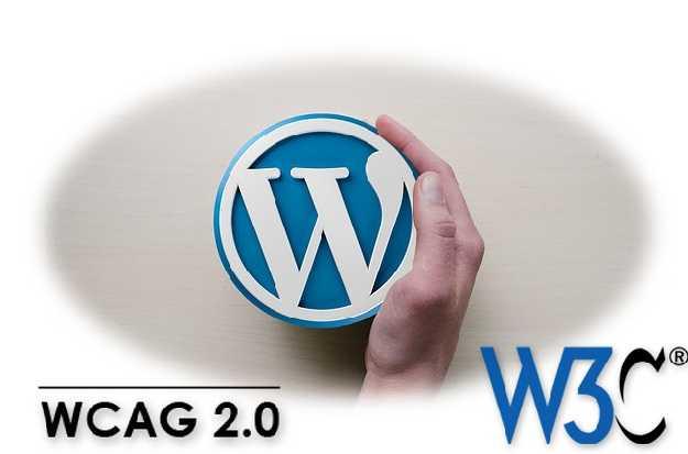 WordPress logót kezében tartó ember: W3C és WCAG 2.0. Össze lehet hozni őket.
